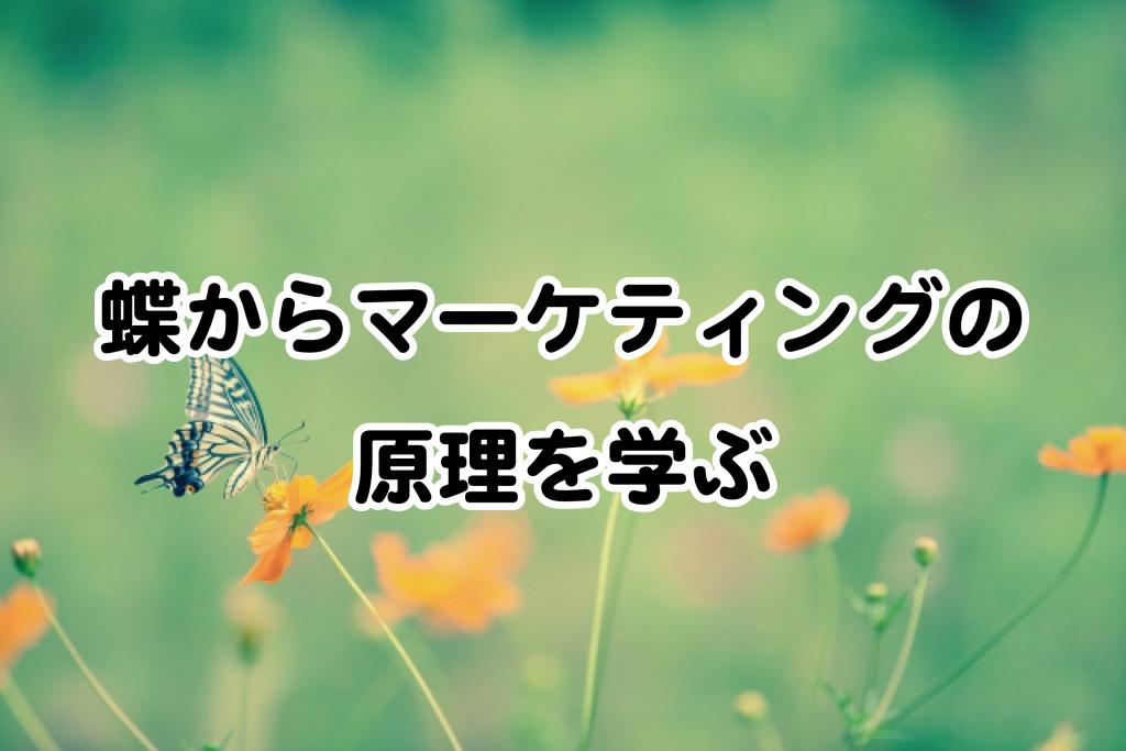 蝶からマーケティングの原理を学ぶ ブログ用